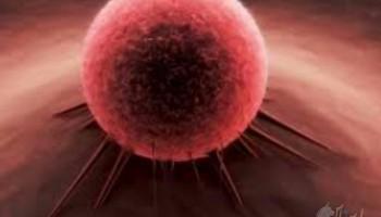 روش درمانی جدید سرطان تأییدیه گرفت
