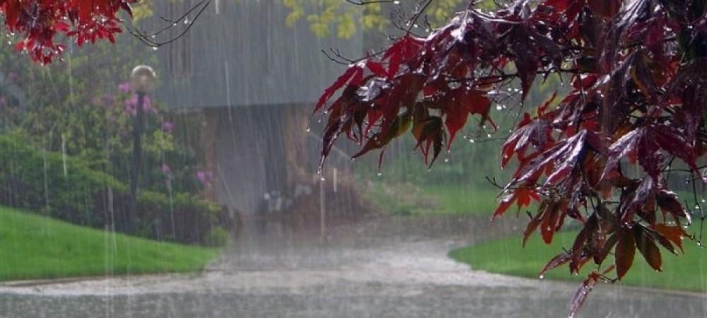پیش بینی بارش باران برای شمال و غرب کشور