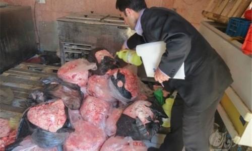 سازمان محیط زیست به فروش گوشت خرس واکنش نشان داد