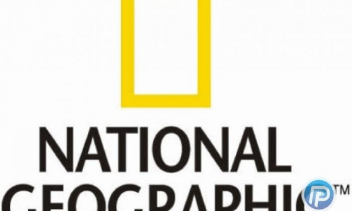 عکس منتخب نشنال جئوگرافیک | تماشای پرندگان