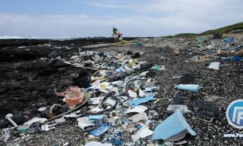 اقیانوس منجمد جنوبی یا سرزمین زباله ها ؟