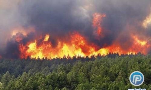جنگلهای شیرین بهار در شهرستان مسجدسلیمان استان خوزستان به علت نامعلوم دچار آتشسوزی شد